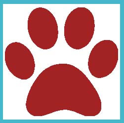river-dog-inn-red-dog-paws-big-w-blue-box